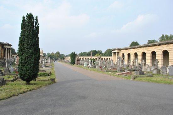 Brompton Cemetery: View through the cemetery