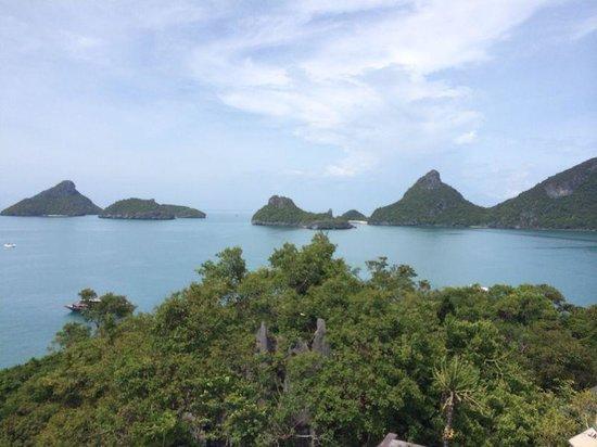 Thai Dee Garden Resort: tanto verde