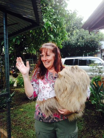 Toucan Rescue Ranch: Leslie and one of the sloths