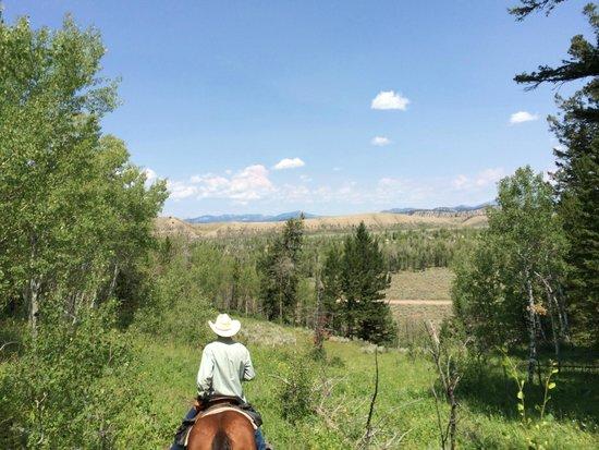 Moose Head Ranch: Horseback Riding
