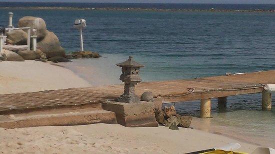 Aruba Reef Beach Apartments: Everyday day
