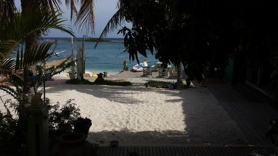 Aruba Reef Beach Apartments: The view that stays very special every day