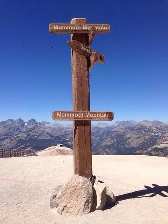 On top of Mammoth Mountain.