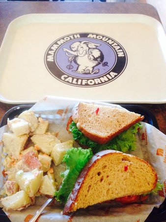 Mammoth Mountain : BLT with potato salad at Cafe Eleven53.