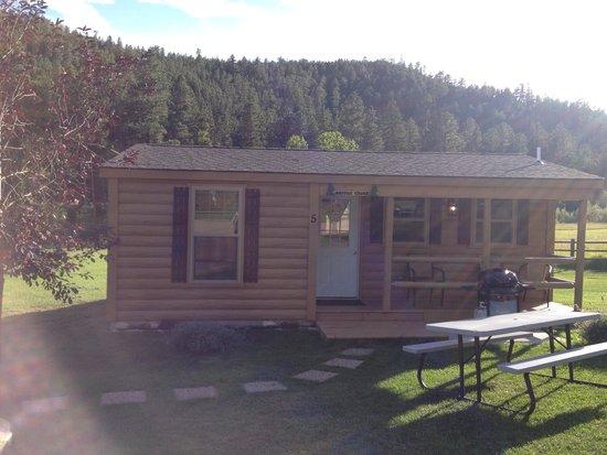 Sofa Sleeper Picture Of American Pines Cabins Keystone