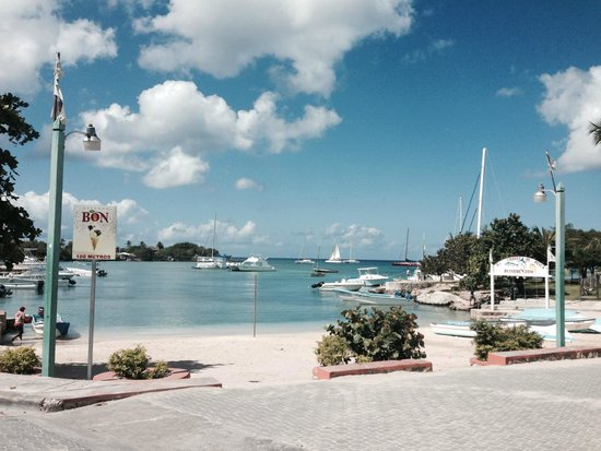 Sea Pro Divers : dock views