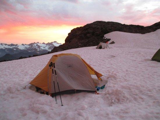Get In The Wild Adventures: 5 days on Mt. Baker