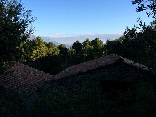 B&B Villa Praesidio: View from our room
