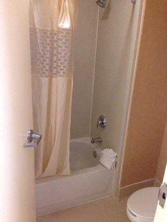 Hampton Inn & Suites Baltimore Inner Harbor: Shower / toilet...very clean!!