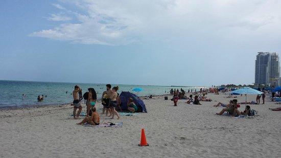 Miami Beach Boardwalk: miami beach