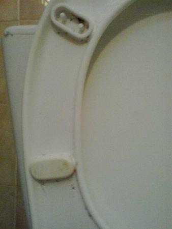 Hotel Bellerive : Taza WC