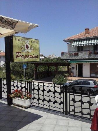 trattoria pizzeria  PAPERINO