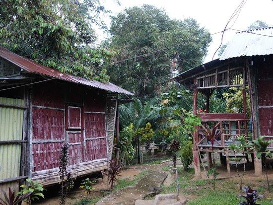 Durian Chalet : chalets (il y en a aussi des plus modernes)
