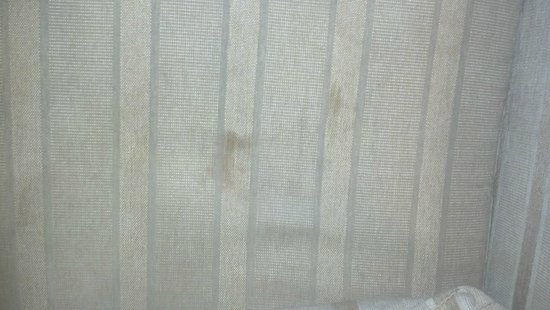Vanllee Hotel and Suites: stains on couch, where kids would use the fold out