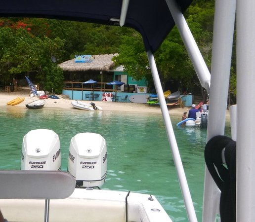 Dinghy's Beach Bar and Grill: pulling right on in