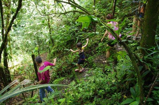 Princesa de la Luna Eco Lodge: Hiking Path