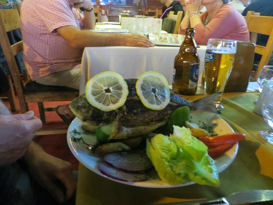 Medusa Restaurant: Freshly Caught Sea Bream