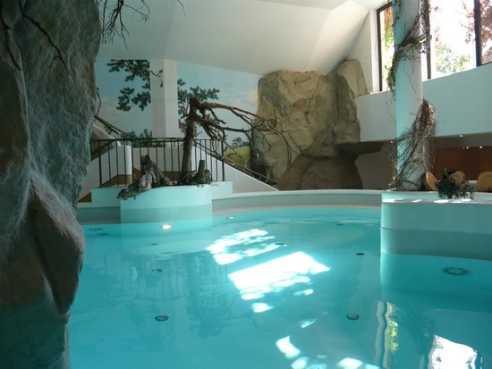 Wellnesshotel Almhof Call: piscina