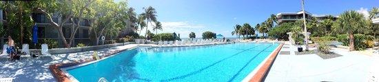 1800 Atlantic Suites : Salt water pool