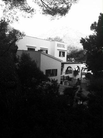 Hostal Los Pinos: Reception and breakfast area