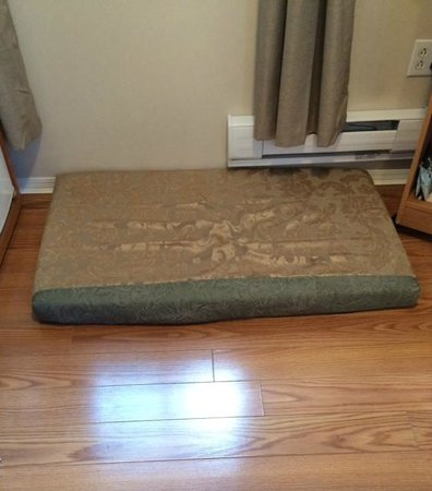 Pinewood Inn: Dog Bed supplied