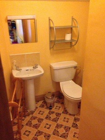 Auburn House B&B: Bathroom.
