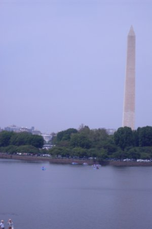 View of Tidal Basin from Jefferson Memorial
