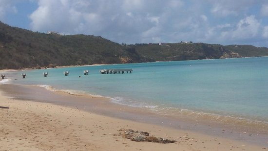 Lloyd's Bed & Breakfast : View of the beach from Crocus Bay, which is a short drive from the guest house