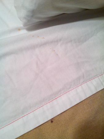 Fiddler's Inn North: close up of stains
