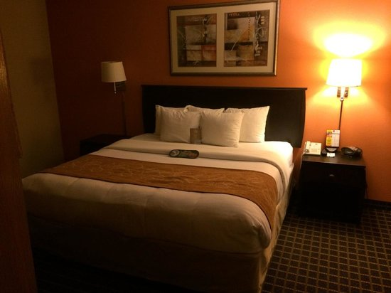 Comfort Suites Panama City Beach : Coziest bed ever - with assorted pillows to choose from