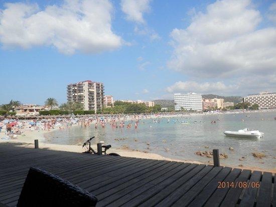 Hotel Marina Torrenova: Spiaggia