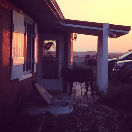 Circle View Guest Ranch: Welcome Committee!