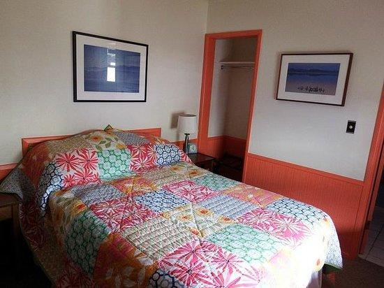 El Mono Motel: El Mono Room