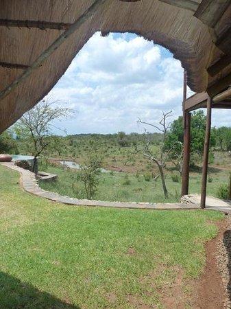 Royal Madikwe Luxury Safari Lodge: vue de la piscine principale