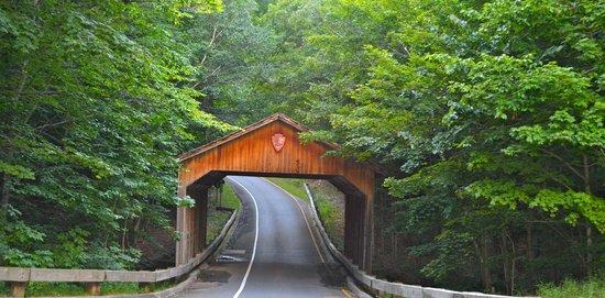 Pierce Stocking Scenic Drive: Pierce stock scenic drive
