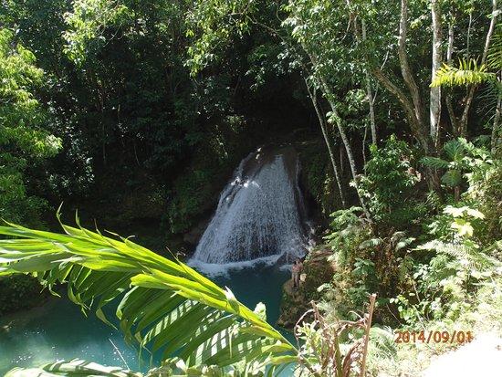 Island Gully Falls: first falls