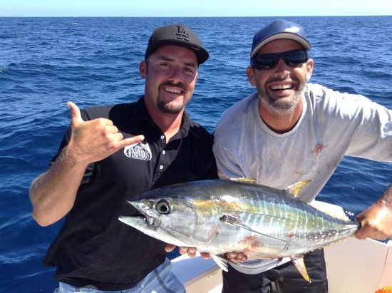 Flying Fish Tour Catalina Reviews