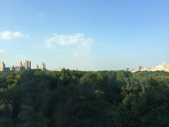 The Ritz-Carlton New York, Central Park: Our view of the Upper West Side, Central Park, and the Upper East Side