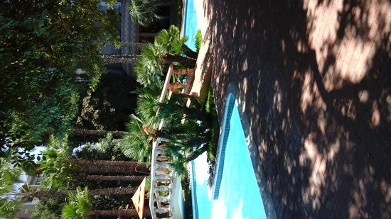 Hotel Lucerna Tijuana: Enjoy a tropical feel by the pool