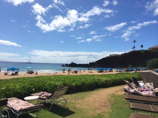 Sheraton Maui Resort & Spa : beach
