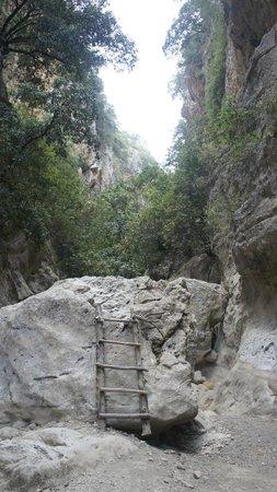 St. Anthony Gorge: Inside the Gorge