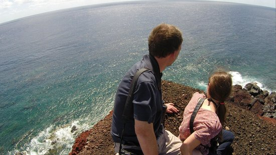 Snapper : View out to sea from the lava field--owner's photo