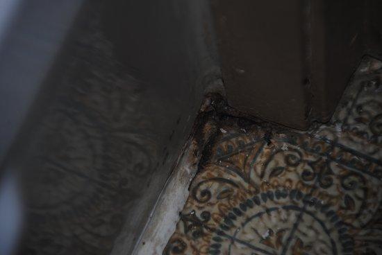 The Drake Inn: Dirty corner in bathroom