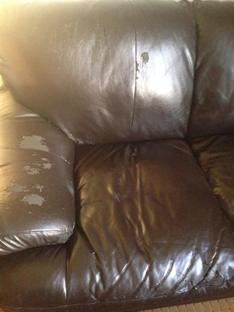 Wyndham Garden Amarillo : Couch in room...I'll sit on the bed, thank you.