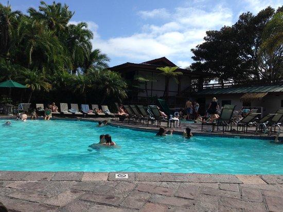 Catamaran Resort Hotel and Spa: Pool area