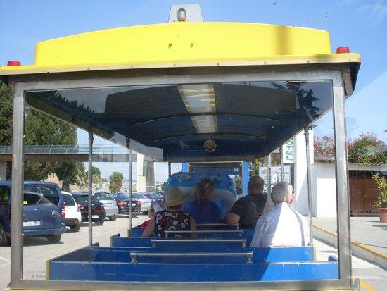 Santa Susanna Resort: Train