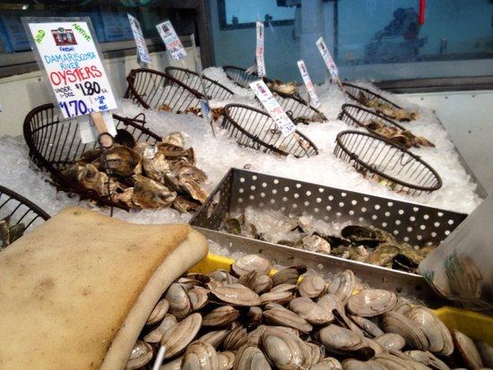 Fish market picture of maine foodie tours culinary for Fish market portland maine