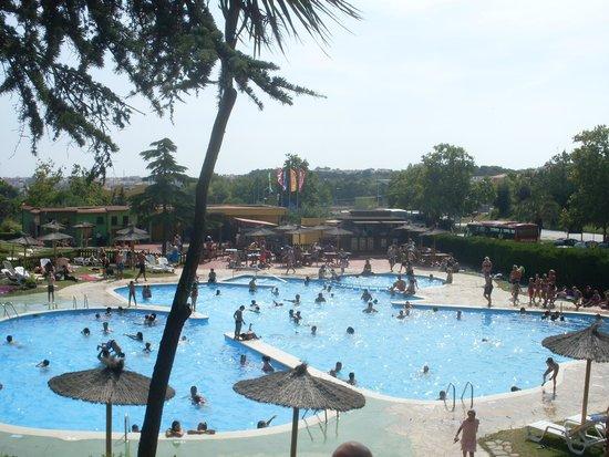Santa Susanna Resort: Marineland