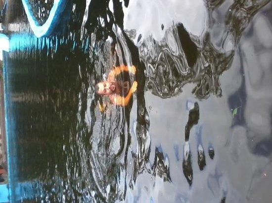 Pousada das Cachoeiras: Piscina natural