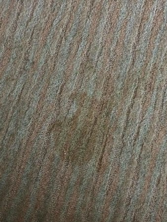 Baymont Inn & Suites Gainesville: Large stain on floor